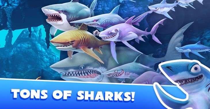 Чит коды на Hungry Shark Evolution, как взломать Монеты и Драгоценные камни